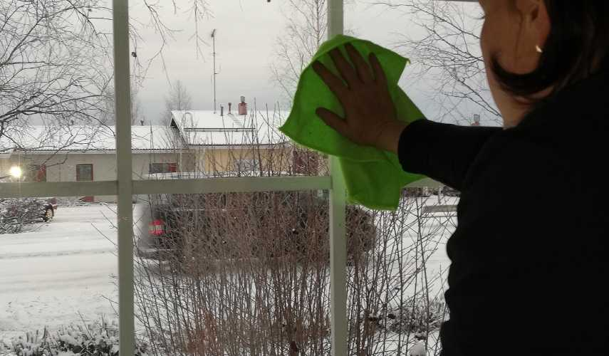 Tättähäärä pesee ikkunoita.